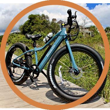 electric bike rental galena