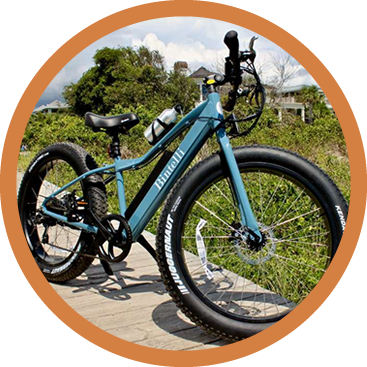 electric bike rental galena